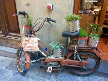 Herby Bike